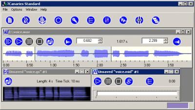 7Canaries Standard 1.00 screenshot